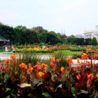 Вена - парк